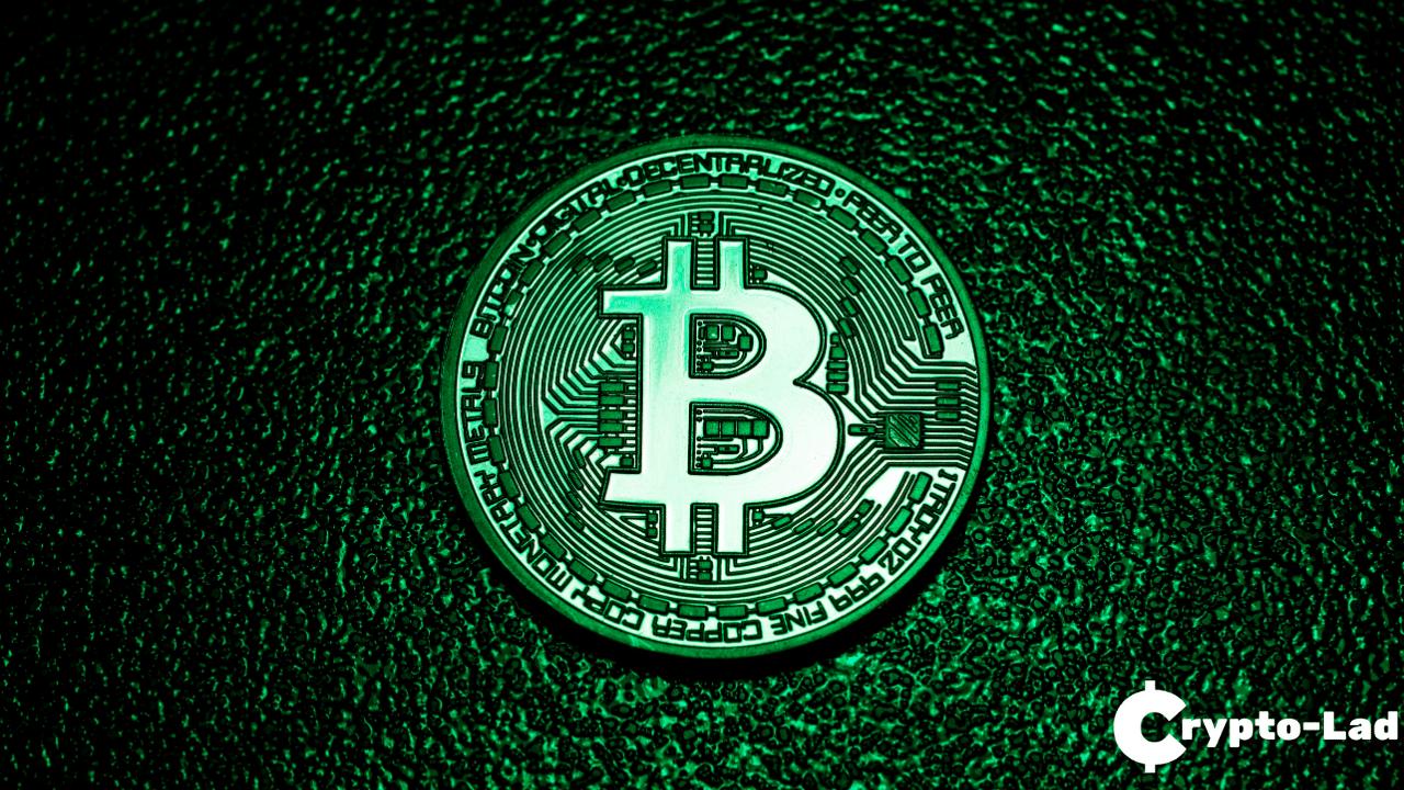 Huobi Bitcoin Whales