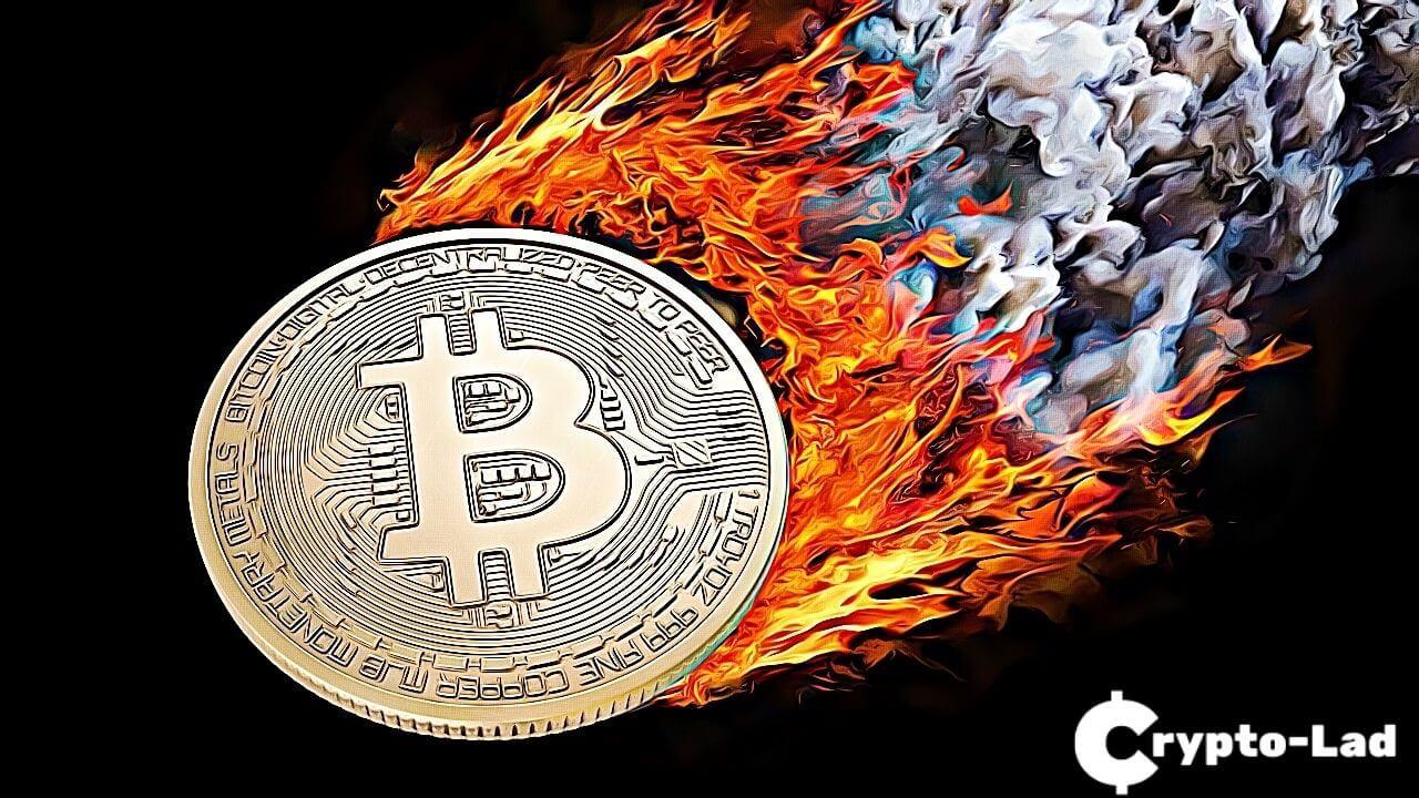 coin burn