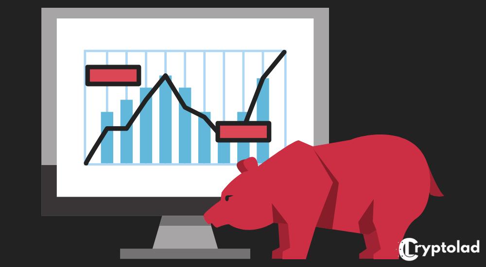 bear market infographic
