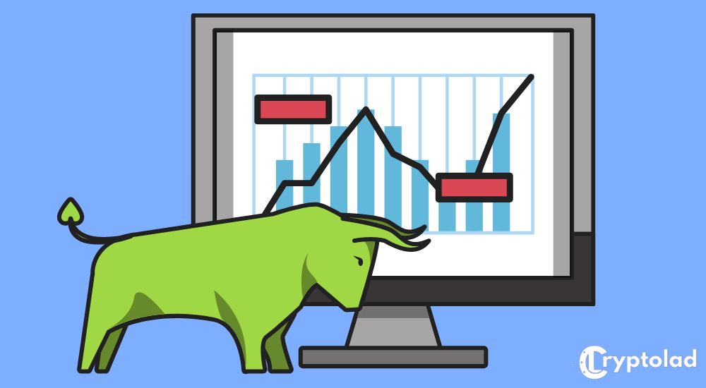 bull market infographic