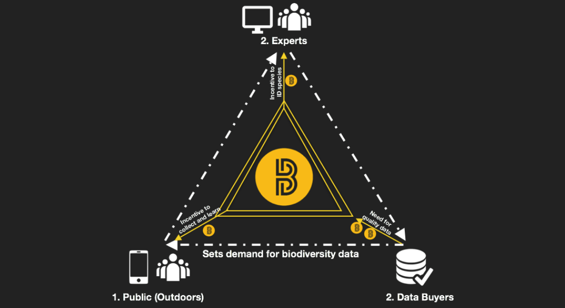 biocoin eco-friendly cryptocurrency